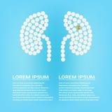 Ανθρώπινο νεφρό με τα χάπια σε μια ρεαλιστική διανυσματική απεικόνιση υποβάθρου η έννοια που δημιουργήθηκε απομόνωσε το ιατρικό λ Διανυσματική απεικόνιση