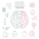 Ανθρώπινο σύνολο infographics εγκεφάλου, ύφος περιλήψεων Στοκ Εικόνες