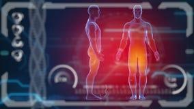 Ανθρώπινο σώμα ανιχνευτών Φουτουριστικό ιατρικό όργανο ελέγχου HUD Ιατρικό μέλλον έννοιας απεικόνιση αποθεμάτων