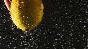 Ανθρώπινο χέρι που κρατά το φρέσκο λεμόνι κάτω από το νερό στο μαύρο υπόβαθρο Εσπεριδοειδή στο νερό με τις φυσαλίδες Οργανική τρο απόθεμα βίντεο