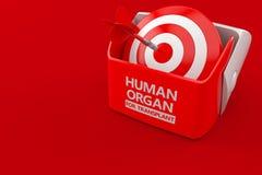 Ανθρώπινο όργανο για την έννοια μεταμόσχευσης διανυσματική απεικόνιση