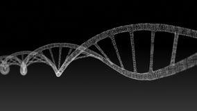 Ανθρώπινο DNA Αφηρημένο μαύρο υπόβαθρο με το πλέγμα Ζωτικότητα βρόχων διανυσματική απεικόνιση