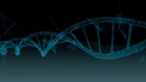 Ανθρώπινο DNA Αφηρημένο υπόβαθρο με το πλέγμα Ζωτικότητα βρόχων απεικόνιση αποθεμάτων