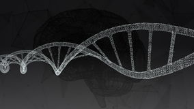 Ανθρώπινο DNA, ο εγκέφαλος Αφηρημένο υπόβαθρο με το πλέγμα Ζωτικότητα βρόχων διανυσματική απεικόνιση