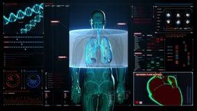 Ανιχνευτικό μπροστινό σώμα Ανθρώπινοι πνεύμονες, πνευμονικά διαγνωστικά στο ταμπλό ψηφιακής επίδειξης Μπλε φως ακτίνας X διανυσματική απεικόνιση