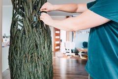 Ανοίγοντας το χριστουγεννιάτικο δέντρο στο σπίτι Στοκ φωτογραφία με δικαίωμα ελεύθερης χρήσης