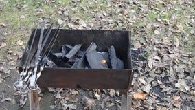 Ανοίξτε πυρ στη σχάρα Οβελίδια Meatless στη σχάρα Οι ξυλάνθρακες καίνε απόθεμα βίντεο