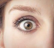 Ανοιγμένο μάτι Στοκ φωτογραφία με δικαίωμα ελεύθερης χρήσης