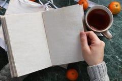 Ανοιγμένο σελίδες εκλεκτής ποιότητας βιβλίο πράσινο μαρμάρινο countertop Στοκ Φωτογραφίες