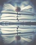 Ανοικτά βιβλία με το μήλο σε το και απεικονισμένος στο νερό χιονώδης χειμώνας δέντρων ιστορίας χιονιού τοπίων Στοκ Εικόνα