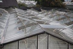 Ανοικτά παράθυρα των θερμοκηπίων σε ένα σχέδιο σε ` s-Gravenzande, Westland, οι Κάτω Χώρες στοκ εικόνες