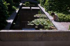 Ανοικτές ημέρες Άμστερνταμ κήπων Στοκ φωτογραφίες με δικαίωμα ελεύθερης χρήσης