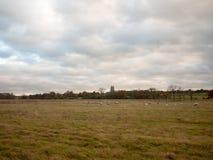 Ανοικτή εκκλησία Αγγλία προβάτων εδάφους χλόης φθινοπώρου τομέων σαφής στοκ φωτογραφία με δικαίωμα ελεύθερης χρήσης