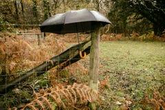 ανοικτή ομπρέλα Στοκ φωτογραφίες με δικαίωμα ελεύθερης χρήσης