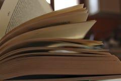 Ανοικτό βιβλίο και βγαλμένος φύλλα από τον αέρα Στοκ εικόνες με δικαίωμα ελεύθερης χρήσης