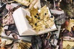 Ανοικτό βιβλίο στην ξύλινη κινηματογράφηση σε πρώτο πλάνο πλαισίων που καλύπτεται με τα φύλλα φθινοπώρου, τοπ άποψη, ηλιόλουστη η Στοκ Φωτογραφίες