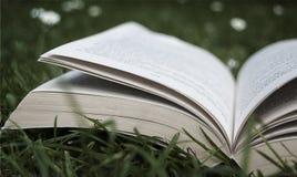 Ανοικτό βιβλίο στη χλόη κατά τη διάρκεια του καλοκαιριού Στοκ Φωτογραφίες
