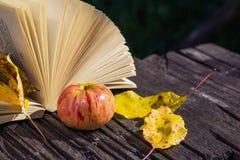 Ανοικτό βιβλίο στον ξύλινο πίνακα το φθινόπωρο Στοκ Εικόνες