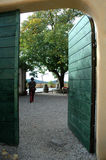 ανοικτό δέντρο πορτών Στοκ Φωτογραφία