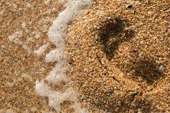 Ανοικτό θαλασσινό κοχύλι σε μια παραλία χαλικιών που καταβρέχεται από τις κυματωγές μιας θάλασσας Στοκ Εικόνα