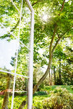 ανοικτό καλοκαίρι κήπων σ& Στοκ Εικόνες