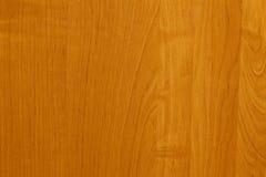 Ανοικτό καφέ, κατασκευασμένο κατώτερο υπόβαθρο δέντρων για το σχέδιο, διακόσμηση Στοκ φωτογραφία με δικαίωμα ελεύθερης χρήσης