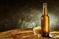 Ανοικτό μπουκάλι της μπύρας κοντά σε ένα σύνολο κύπελλων των φυστικιών Στοκ εικόνες με δικαίωμα ελεύθερης χρήσης