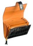 Ανοικτό πορτοφόλι ή πορτοφόλι δέρματος Στοκ Εικόνα