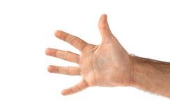 Ανοικτό χέρι (που απομονώνεται) Στοκ φωτογραφία με δικαίωμα ελεύθερης χρήσης