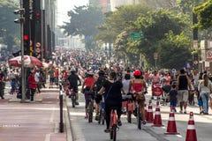 Ανοικτό Paulista Στοκ Φωτογραφίες