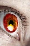 ανοιχτό κόκκινο ματιών Στοκ φωτογραφίες με δικαίωμα ελεύθερης χρήσης