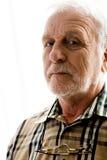 ανοιχτό λευκό πορτρέτου παππούδων στοκ εικόνες