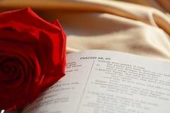 Ανοχή και αγάπη, σύμβολα στοκ φωτογραφία με δικαίωμα ελεύθερης χρήσης
