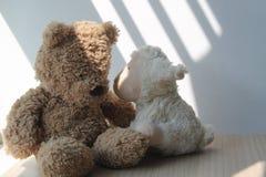 Αντέξτε και συνεδρίαση παιχνιδιών αρνιών από το παράθυρο στις σκιές Στοκ Φωτογραφία