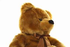 αντέξτε καφετή teddy Στοκ Εικόνα