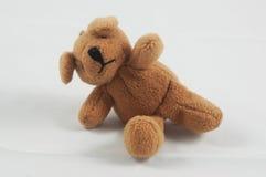 αντέξτε καφετή teddy Στοκ Φωτογραφίες