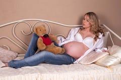 αντέξτε την έγκυο teddy γυναίκα Στοκ Εικόνες