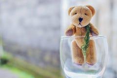 Αντέξτε την κούκλα στο γυαλί Στοκ φωτογραφία με δικαίωμα ελεύθερης χρήσης