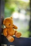Αντέξτε την κούκλα Στοκ Εικόνες