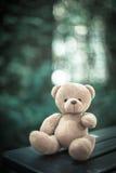 Αντέξτε την κούκλα Στοκ φωτογραφία με δικαίωμα ελεύθερης χρήσης