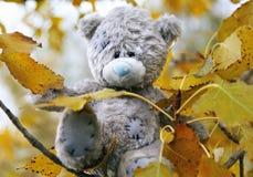 αντέξτε τη ζωή teddy Στοκ εικόνες με δικαίωμα ελεύθερης χρήσης