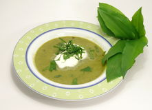 αντέξτε τη σούπα πράσων Στοκ Φωτογραφίες