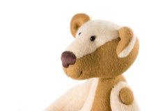 αντέξτε το κεφάλι teddy Στοκ φωτογραφίες με δικαίωμα ελεύθερης χρήσης