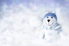αντέξτε το πολικό χιόνι Στοκ Φωτογραφίες