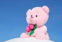 αντέξτε το ροζ Στοκ Φωτογραφίες