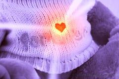 αντέξτε το teddy βαλεντίνο Στοκ φωτογραφία με δικαίωμα ελεύθερης χρήσης