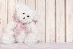 αντέξτε το teddy λευκό Στοκ Φωτογραφίες
