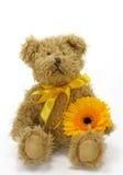 αντέξτε το teddy παιχνίδι Στοκ φωτογραφία με δικαίωμα ελεύθερης χρήσης