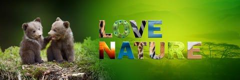 Αντέξτε cub με τη φύση αγάπης κειμένων Στοκ Φωτογραφίες
