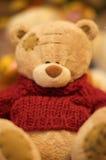 αντέξτε teddy Στοκ Εικόνες